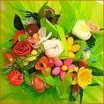 Chauvet Fleurs